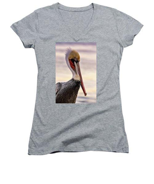 Shelter Island's Pelican Women's V-Neck T-Shirt (Junior Cut) by Martina Thompson