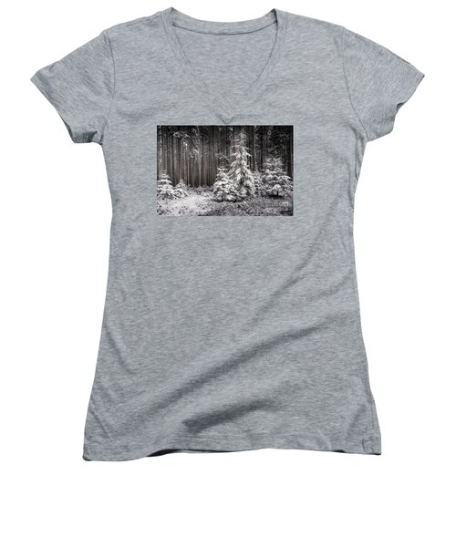 Women's V-Neck T-Shirt (Junior Cut) featuring the photograph Sheltered Childhood by Hannes Cmarits