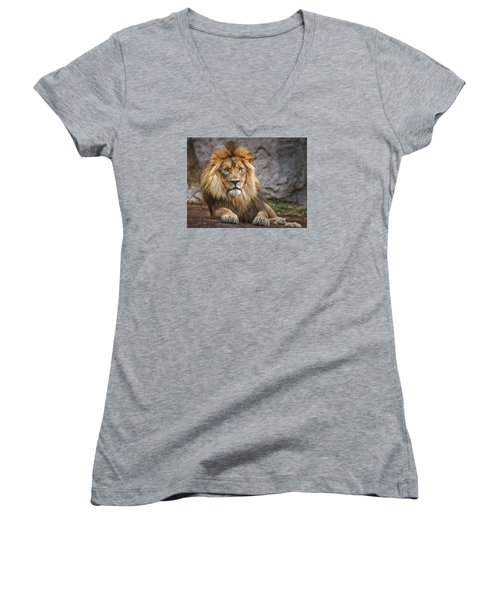 Women's V-Neck T-Shirt (Junior Cut) featuring the photograph Shombay by Elaine Malott