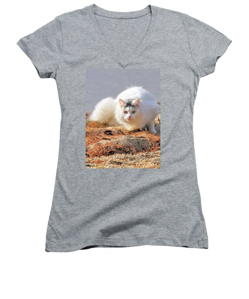 Women's V-Neck T-Shirt featuring the photograph Shore Kitty by Debbie Stahre