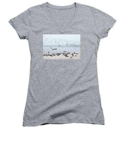 Shorebirds Women's V-Neck T-Shirt (Junior Cut) by Scott Cameron