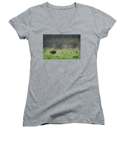 Women's V-Neck T-Shirt (Junior Cut) featuring the photograph Showing Off by Bill Wakeley