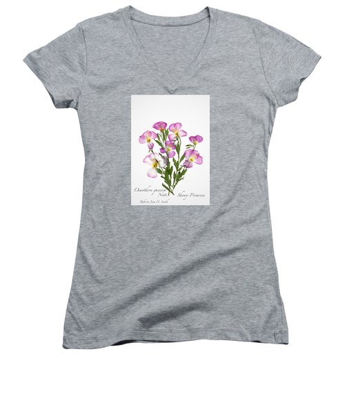Showy-primrose Women's V-Neck T-Shirt