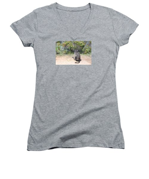 Women's V-Neck T-Shirt (Junior Cut) featuring the photograph Shunned By A Baboon by Bev Conover