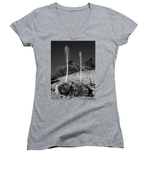 Side By Side Women's V-Neck T-Shirt