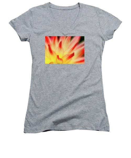 Side View Women's V-Neck T-Shirt (Junior Cut) by Greg Nyquist