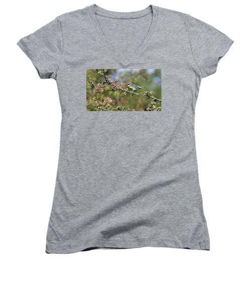 Signs Of Spring Women's V-Neck T-Shirt (Junior Cut) by Stephen Flint