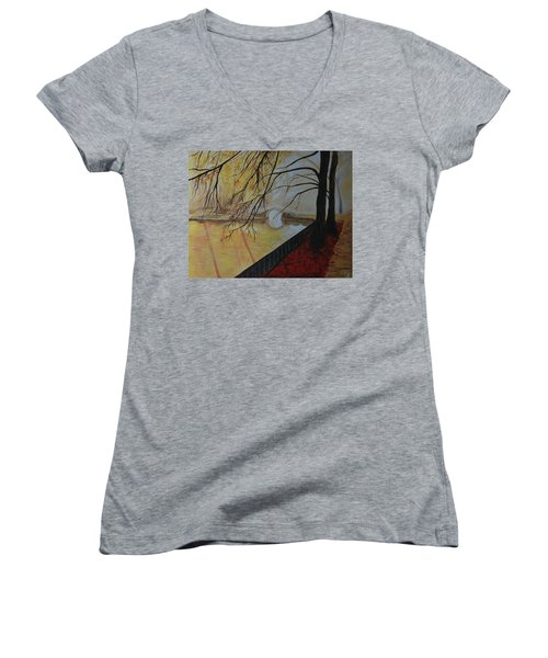 Silence Women's V-Neck T-Shirt (Junior Cut) by Leslie Allen