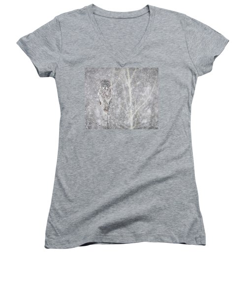 Women's V-Neck T-Shirt (Junior Cut) featuring the photograph Silent Snowfall Landscape by Everet Regal