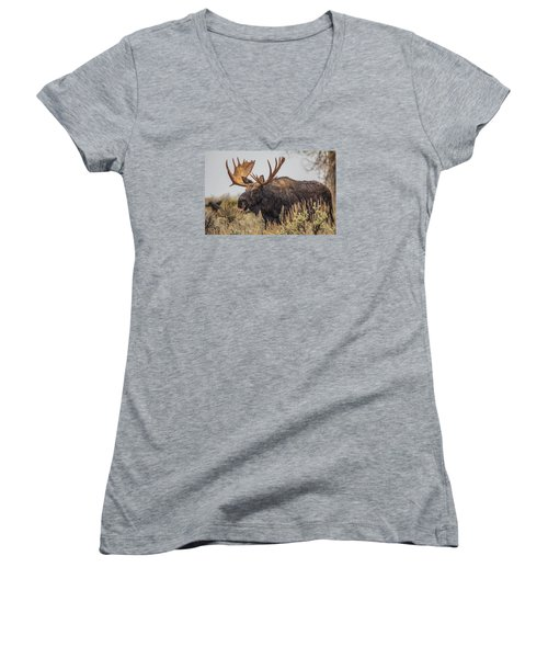 Silly Moose  Women's V-Neck T-Shirt (Junior Cut) by Kelly Marquardt