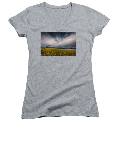 Similarities Women's V-Neck T-Shirt