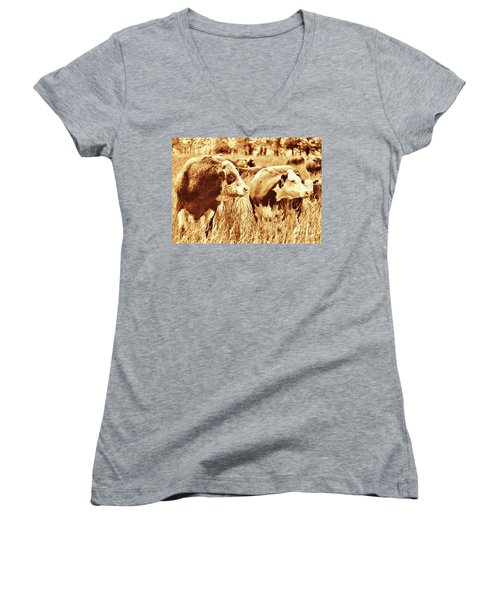 Simmental Bull 3 Women's V-Neck T-Shirt (Junior Cut) by Larry Campbell
