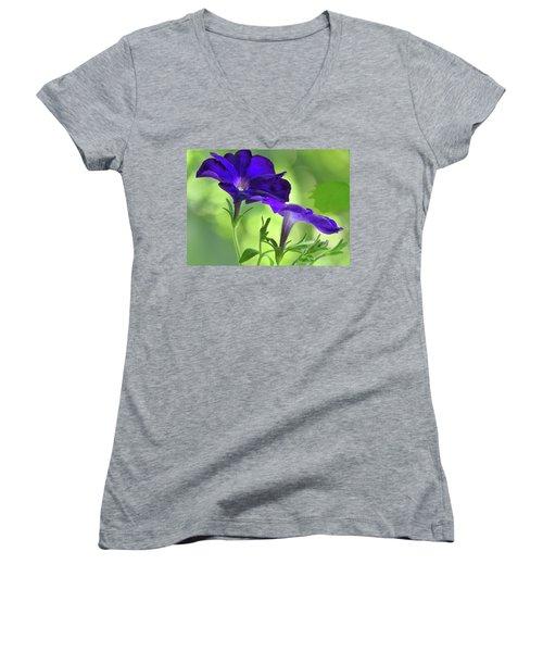 Simple And Undemanding Women's V-Neck T-Shirt (Junior Cut) by Laura Ragland