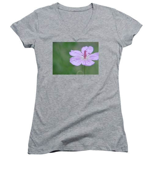 Simplicity Of A Flower Women's V-Neck T-Shirt