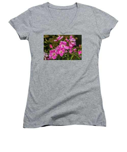 Simply Old-fashioned Women's V-Neck T-Shirt (Junior Cut) by Yeates Photography