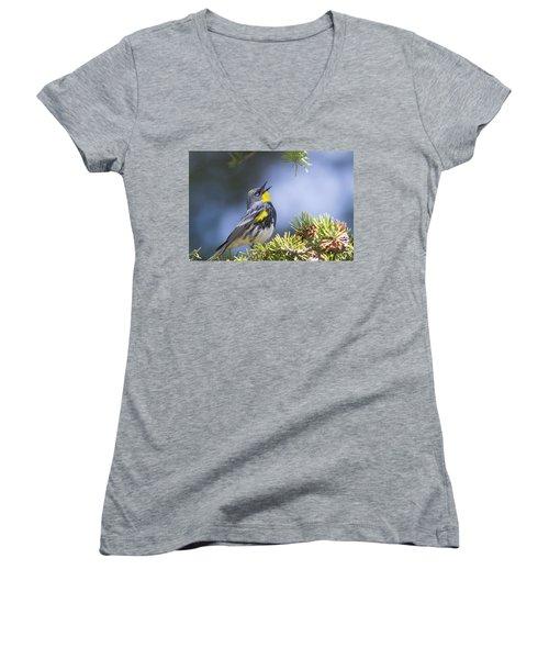 Singing Audubon's Warbler Women's V-Neck