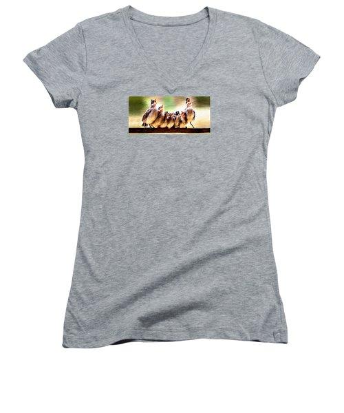 Singing For Supper Women's V-Neck T-Shirt (Junior Cut)
