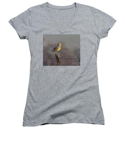 Singing Warbler Women's V-Neck T-Shirt