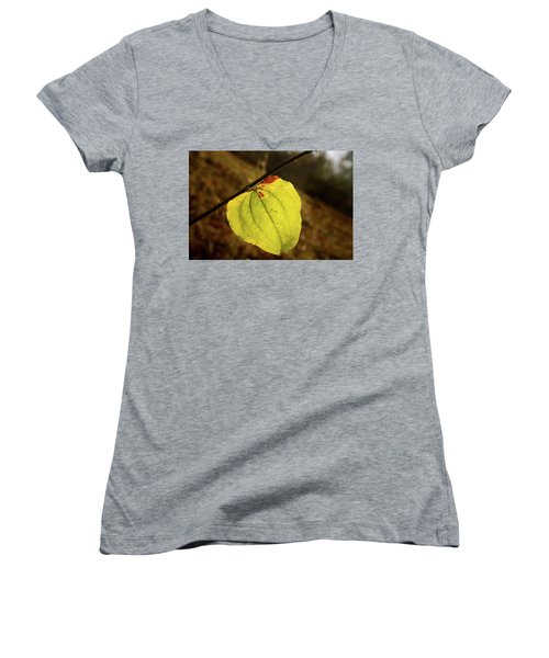 Single Greenbrair Leaf In Evening Sun Women's V-Neck (Athletic Fit)