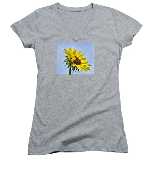 Single Sunflower Women's V-Neck T-Shirt (Junior Cut)