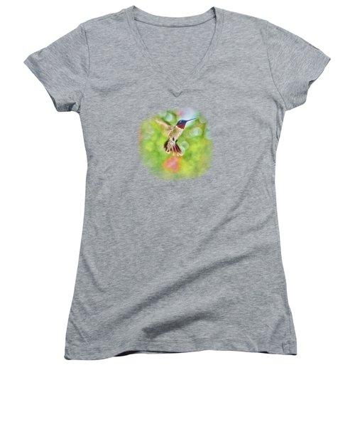 Sir Ruby Throat - Hummingbird Women's V-Neck T-Shirt