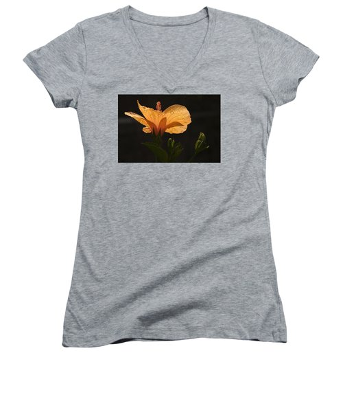 Skc 9937 Grace Of Hibiscus Women's V-Neck T-Shirt