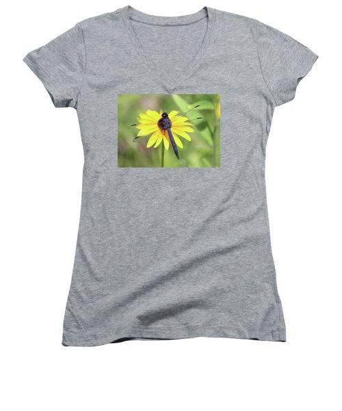 Slaty Skimmer  Women's V-Neck T-Shirt