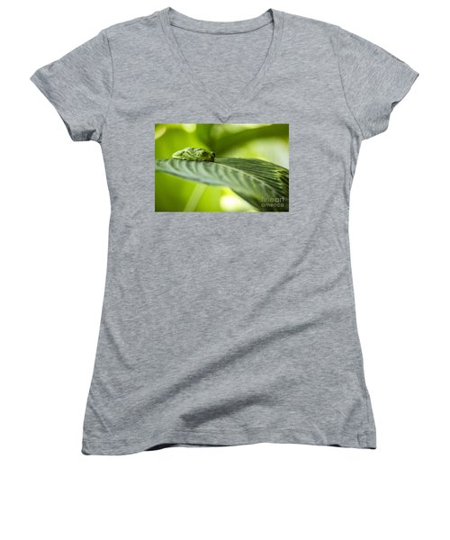 Sleeeepy Women's V-Neck T-Shirt