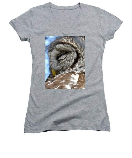 Sleeping Barred Owl Women's V-Neck T-Shirt (Junior Cut) by Rebecca Overton