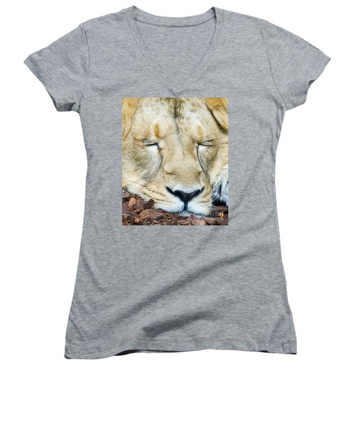 Sleeping Lion Women's V-Neck T-Shirt (Junior Cut) by Colin Rayner