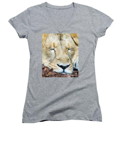 Sleeping Lion Women's V-Neck