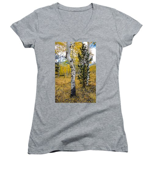 Slightly Crooked Aspen Tree In Fall Colors, Colorado Women's V-Neck T-Shirt (Junior Cut) by John Brink