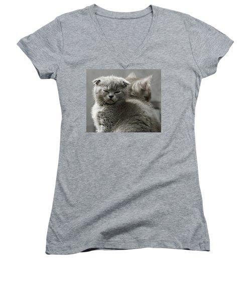 Slumbering Cat Women's V-Neck T-Shirt