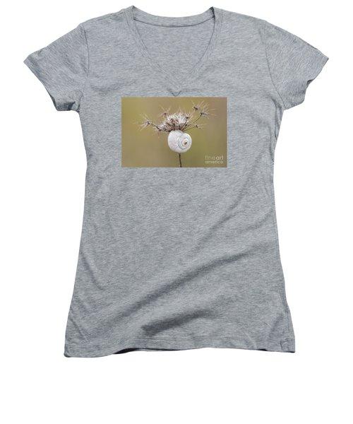 Small Snail Shell Hanging From Plant Women's V-Neck T-Shirt (Junior Cut) by Gurgen Bakhshetsyan