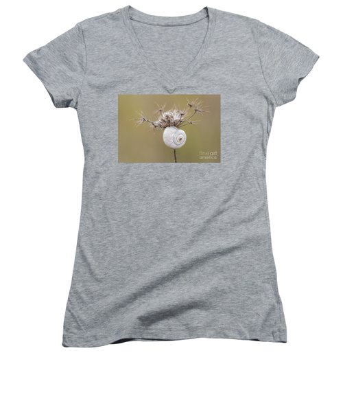 Small Snail Shell Hanging From Plant Women's V-Neck T-Shirt