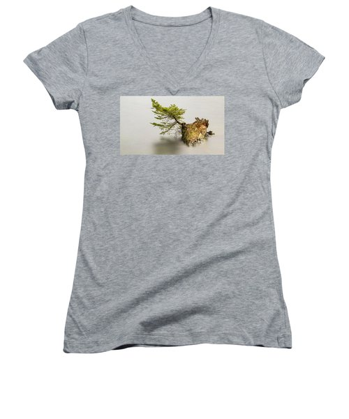 Small Tree On A Stump Women's V-Neck (Athletic Fit)