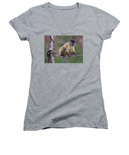 Smarty Pants Women's V-Neck T-Shirt (Junior Cut) by Tony Beck