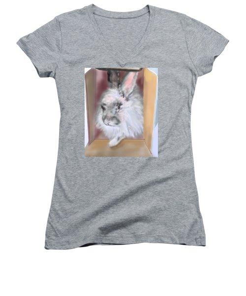 Smokeyblue Women's V-Neck T-Shirt