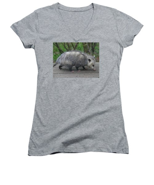 Sniffing Around Women's V-Neck T-Shirt (Junior Cut) by Kym Backland
