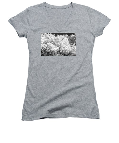 Snow And Frost On Trees In Winter Women's V-Neck T-Shirt (Junior Cut) by John Brink