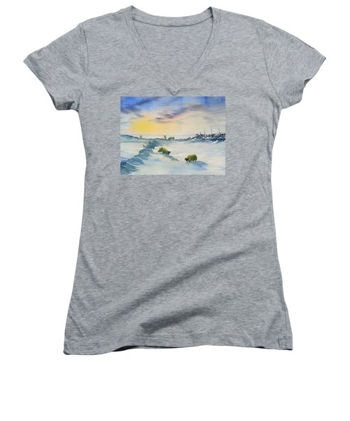 Snow And Sheep On The Moors Women's V-Neck