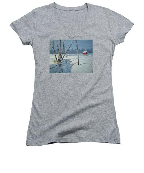 Snow Barn Women's V-Neck T-Shirt