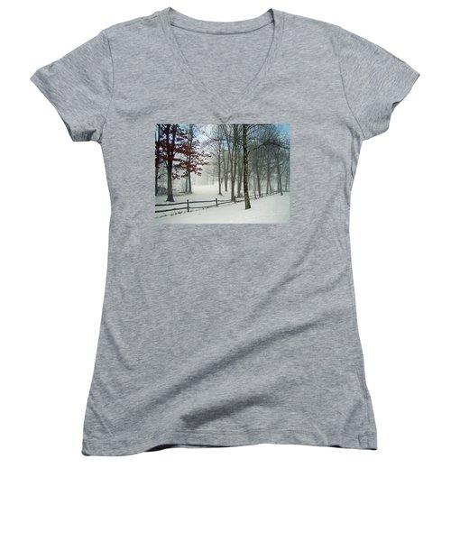 Snow Begins Women's V-Neck T-Shirt (Junior Cut) by Betsy Zimmerli