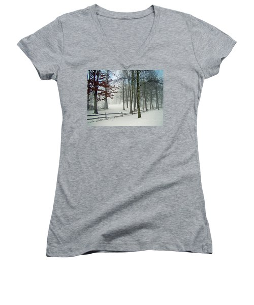 Snow Begins Women's V-Neck T-Shirt
