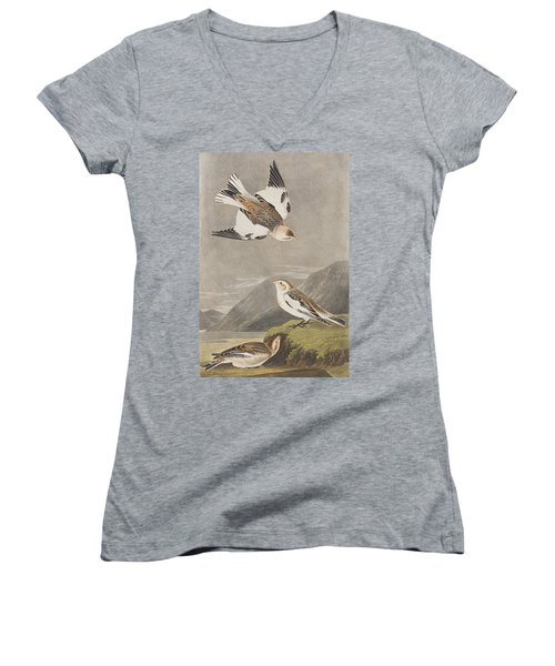 Snow Bunting Women's V-Neck (Athletic Fit)