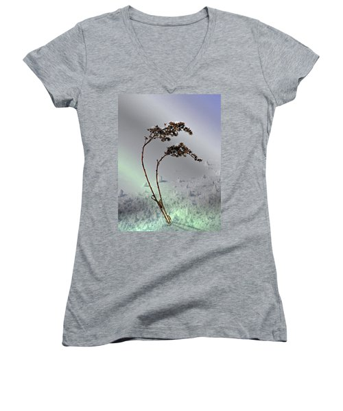 Women's V-Neck T-Shirt (Junior Cut) featuring the photograph Snow Covered Weeds by Judy Johnson
