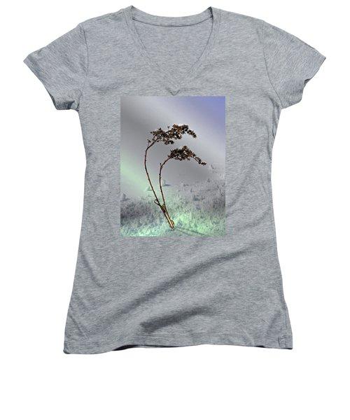Snow Covered Weeds Women's V-Neck T-Shirt
