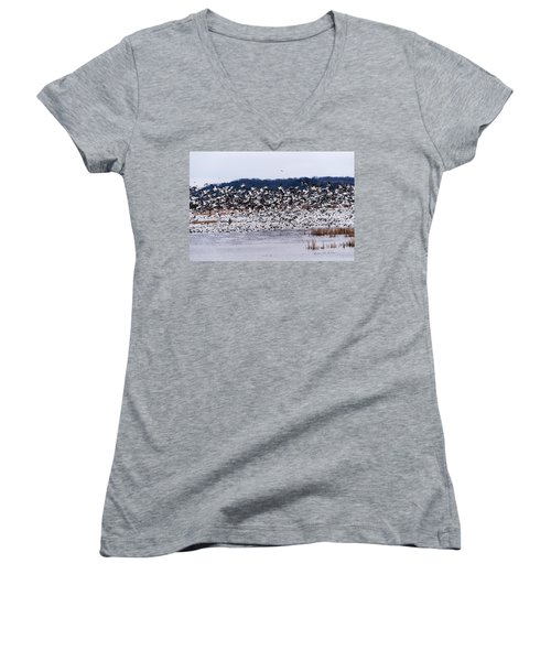 Snow Geese At Squaw Creek Women's V-Neck T-Shirt (Junior Cut) by Edward Peterson