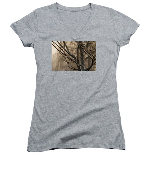 Snow In The Air - Women's V-Neck T-Shirt