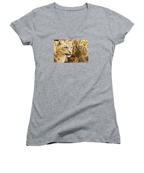 Women's V-Neck T-Shirt (Junior Cut) featuring the photograph Snow Leopard  by Gary Bridger